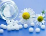 daisy arnica blue